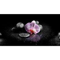Розовая орхидея. Фартук. 3 метра