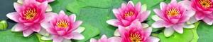 12340 Цветы