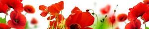12358 Цветы