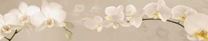 164 Цветы