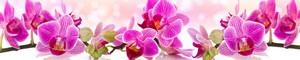 198 Цветы