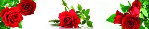 793 Цветы