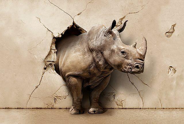 Фотопанно Носорог 3D, размер 400x270 (102)