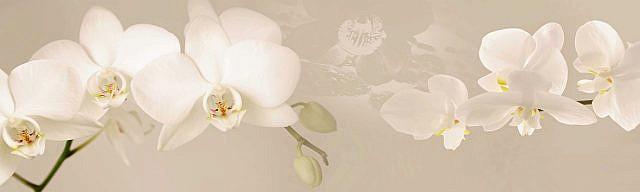 Цветы 164. Фартук для кухни пластиковый