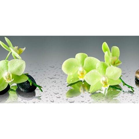 Фартук кухонный пластиковый 3 метра Орхидеи 862 (Фотопечать) ПП