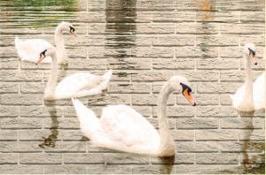 Лебеди- приближение части декора