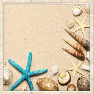 Ракушки на песке 600х600