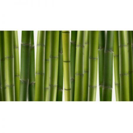 Зеленый бамбук Фартук пластик. 3 метра.