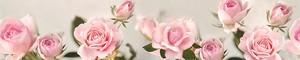 Розы 290