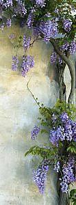 Фотопанно Цветы на стене, размер 100x270 (292)
