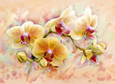 Фотопанно Орхидея живопись, размер 200x147 (300)