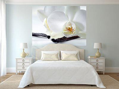 Фотопанно Орхидея и ваниль, размер 200×147 (321)