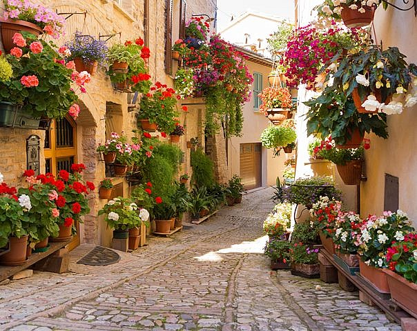 Фотопанно Италия в цветах, размер 300x238 (363)