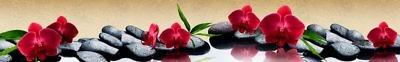 Фартук кухонный пластиковый 3 метра Орхидеи 1284 (Фотопечать) ПП