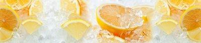 Фартук кухонный пластиковый 3 метра Апельсины, лёд 1399 (Фотопечать) ПП