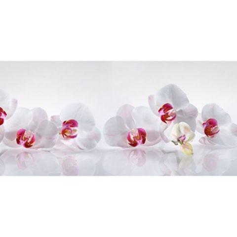 Фартук кухонный пластиковый 3 метра Орхидеи 2041 (Фотопечать) ПП