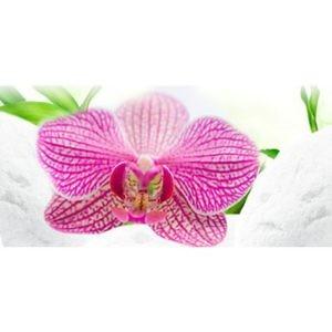 Фартук кухонный пластиковый 3 метра Орхидеи 249 (Фотопечать) ПП