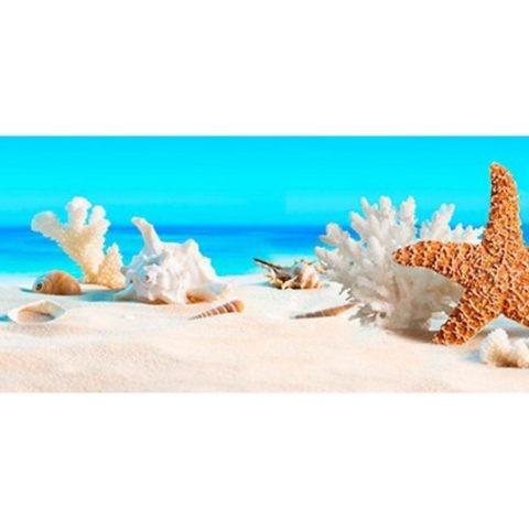Фартук кухонный пластиковый 3 метра Пляж и ракушки 644 (Фотопечать) ПП