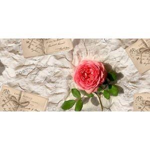 Фартук кухонный пластиковый 3 метра Розы с записками 742 (Фотопечать) ПП