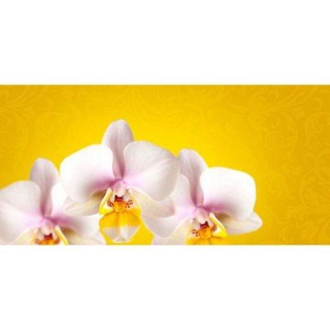 Фартук кухонный пластиковый 3 метра Орхидеи 793 (Фотопечать) ПП