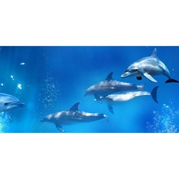 Фартук кухонный пластиковый 3 метра Дельфины 841 (Фотопечать) ПП
