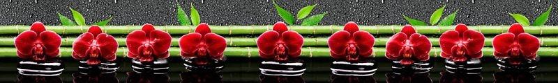 Фартук кухонный пластиковый 3 метра Орхидеи 712 (Фотопечать) ПП