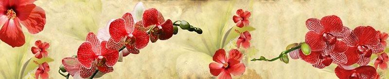 Фартук кухонный пластиковый 3 метра Орхидеи 474 (Фотопечать) ПП