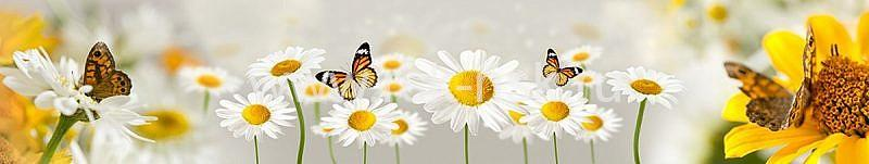Фартук кухонный МДФ 2,8х0,6 метра Бабочки, ромашки 033