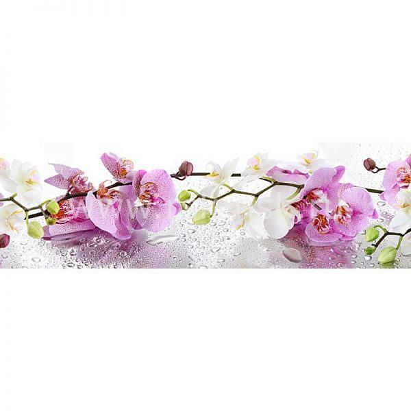 Фартук кухонный МДФ 2,8х0,6 метра Орхидеи 1086