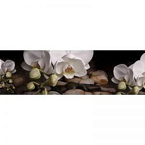 Фартук кухонный МДФ 2,8х0,6 метра Белые орхидеи на камнях 3036
