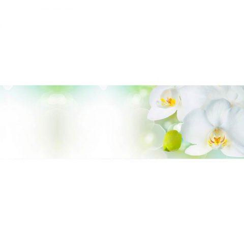 Фартук кухонный МДФ 2,8х0,6 метра Белые орхидеи 014