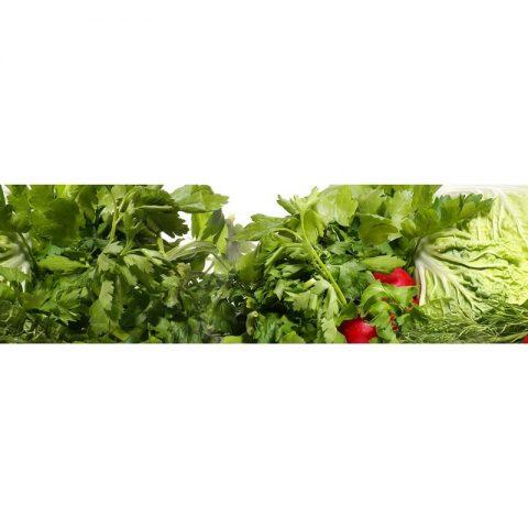 Фартук кухонный МДФ 2,8х0,6 метра Овощи 069