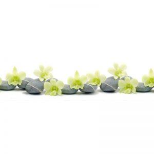 Фартук кухонный пластиковый 3х0,6 метра Орхидеи 9221