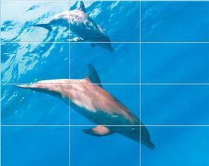 Дельфины- приближение части декора