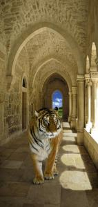 3л Тигр 97-204