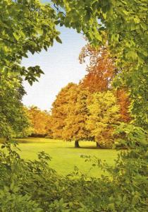 4л  Осенний шепот 136-194