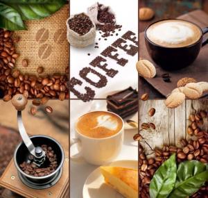 6л Ароматы кофе 204-194
