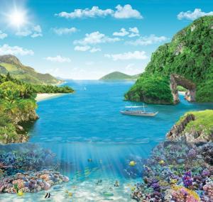 6л Коралловый риф 204-194