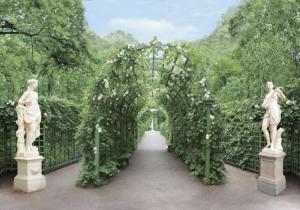 9л Летний сад 291-204