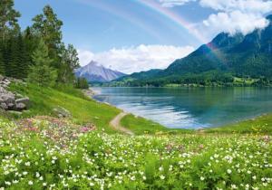 9л Радужное озеро 291-204