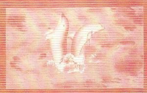 M3007B